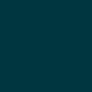 castelijn_disk